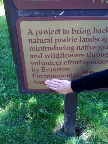 Evanston Environmental Ass